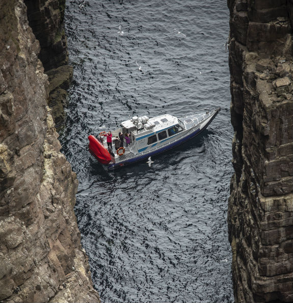 stacks and seabirds tour - visit Stack Of Handa